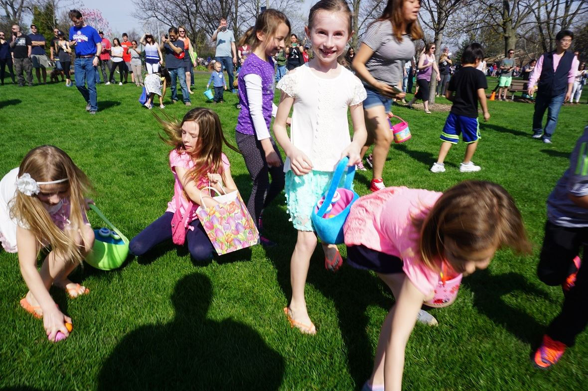 wilder park egg hunt picture